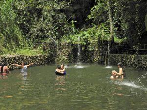Piscina Natural Hotel de la Guadua